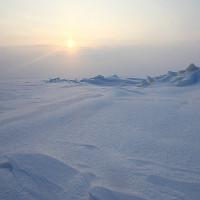 Sinh vật kỳ dị ở Nam Cực: Khoa học phải nghĩ lại việc tìm sự sống ngoài Trái đất