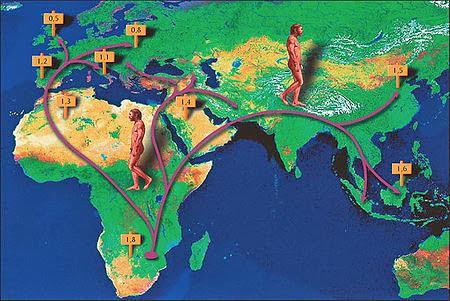 Châu Phi là địa điểm đầu tiên trên sơ đồ tiến hóa loài người
