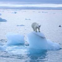 """Chuyện gì đang xảy ra với """"tủ lạnh"""" của Trái Đất?"""