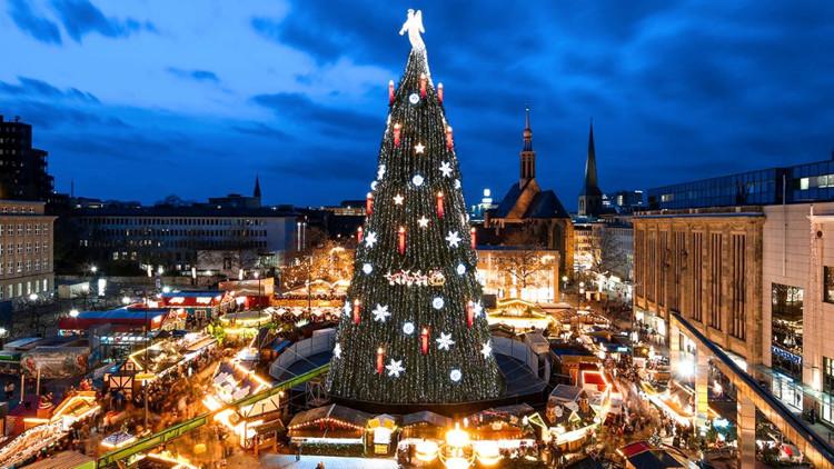 Có khoảng 60 triệu cây thông được trồng để phục vụ lễ Giáng sinh ở châu Âu.