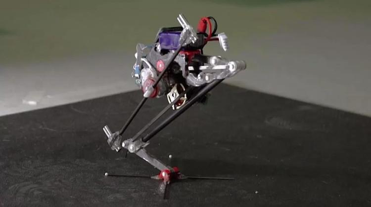 Robot siêu nhỏ Salto.