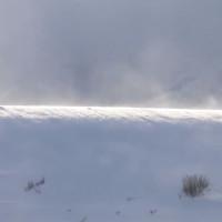 """Video: """"Bóng ma sóng thần tuyết"""" hiếm gặp xuất hiện ở chân trời"""