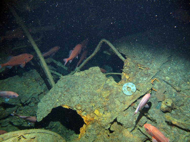Tàn tích tàu ngầm HMAS AE1 của Úc bị chìm ngoài khơi quần đảo Papua New Guinea, New Britain.