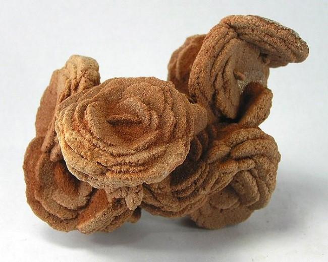 Hoa hồng sa mạc này là sự hình thành của các cụm tinh thể thạch cao hoặc baryte.
