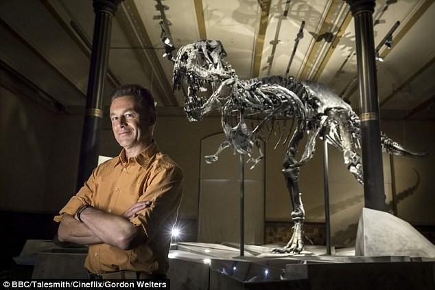 Não bộ của T-rex giống với não chim hơn là bò sát.