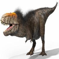 """Bất ngờ với ngoại hình """"trẻ trâu"""" của khủng long bạo chúa T-rex"""