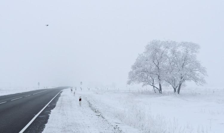 Nhiều nơi trên thế giới đang hứng chịu những đợt lạnh khác thường.