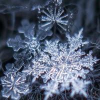 Vòng đời của một bông tuyết