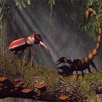"""Bọ cánh cứng khổng lồ """"so càng"""" bọ cạp hoàng đế: Loài nào xứng danh vô địch?"""
