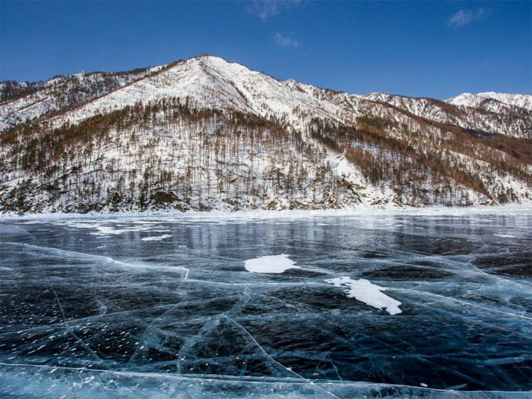 Ở Siberia, người dân thường có truyền thống trồng các cây dưới hồ và sông băng vào đêm giao thừa.