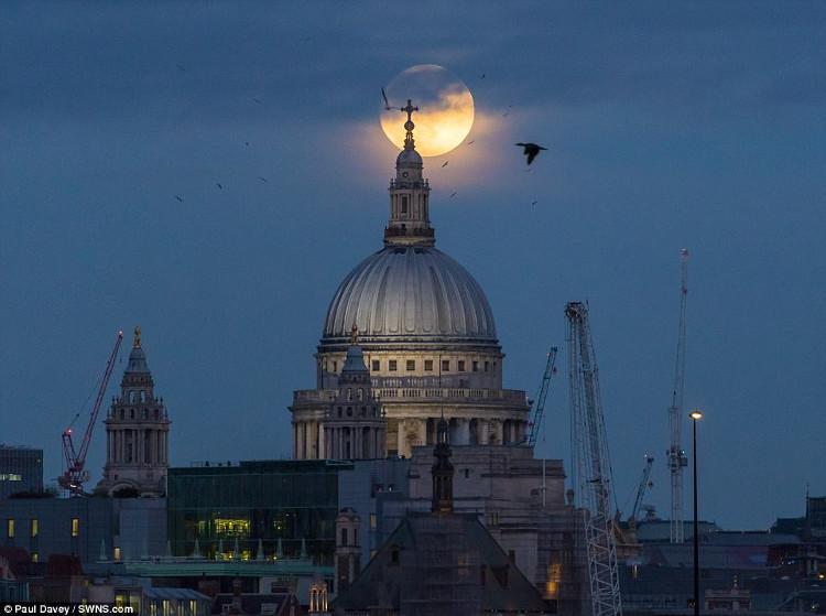 Siêu trăng xuất hiện ở nhà thờ St Paul, Anh.