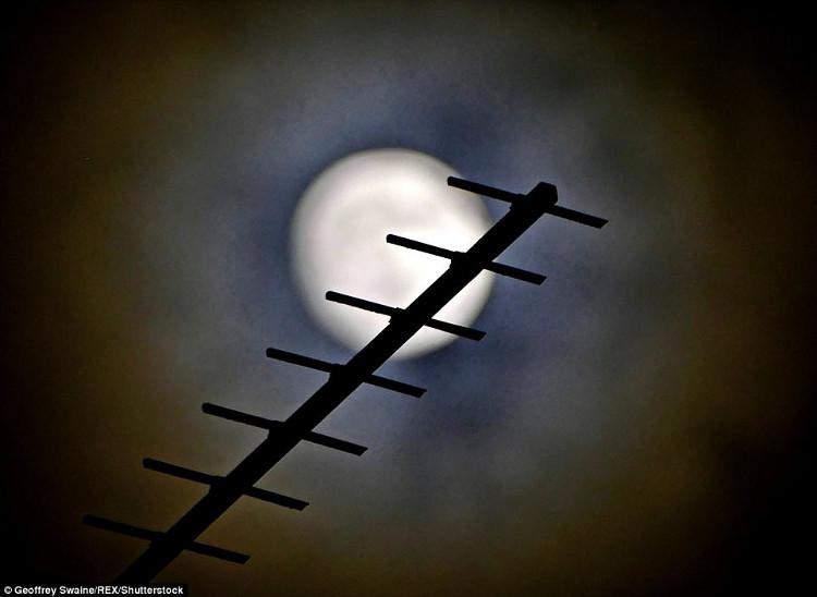 Siêu trăng xuất hiện phía trên Blackhouse Woods, Berkshire.