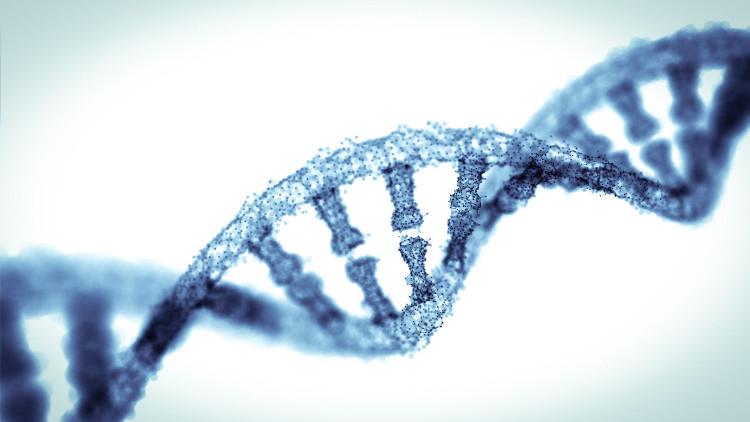 Gene là một điều kiện có thể quyết định tới trí thông minh.