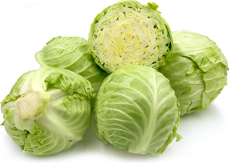 Bắp cải hoặc các loại rau họ cải là nguồn cung cấp rất nhiều vitamin K.