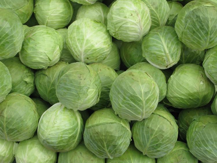 Nghiền lá bắp cải và đặt nó trên trán cũng có thể giảm đau đầu.