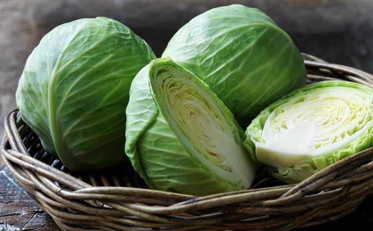 Lượng vitamin trong bắp cải cao hơn nhiều loại rau củ khác.