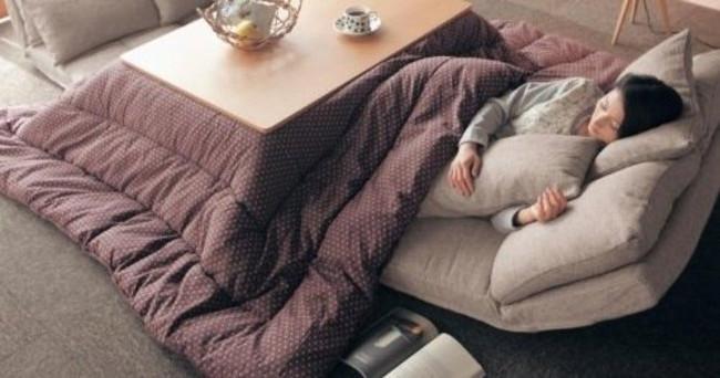 Có rất nhiều loại kotatsu, từ loại nhỏ sát sàn nhà để cho chân vào, đến loại to như cái bàn ăn cỡ lớn.