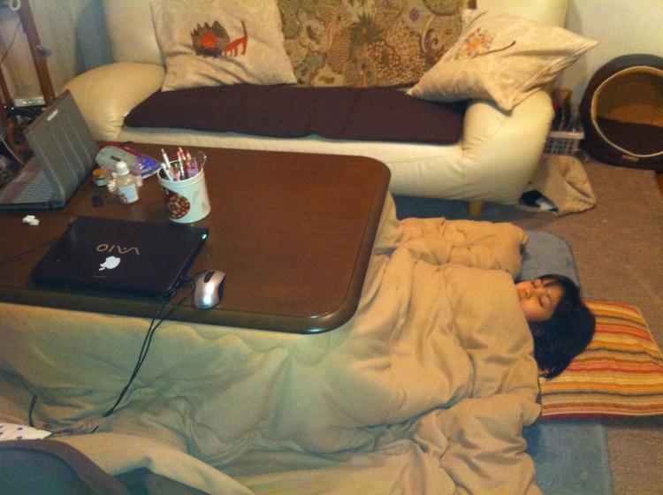 Ngày nay, bất chấp vô vàn phát minh công nghệ sưởi ấm, kotatsu vẫn rất được ưa chuộng.
