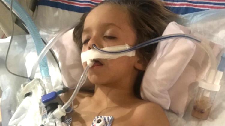 Cậu bé 6 tuổi qua đời sau khi đụng vào con dơi bị nhiễm bệnh.