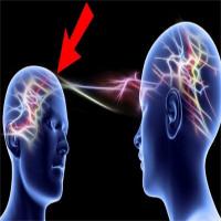 Não người có thể kết nối với nhau như sóng wifi