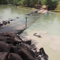 Cá sấu cướp mồi của cần thủ trên khúc sông tử thần