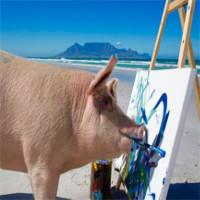 Lợn được cứu khỏi lò mổ vẽ tranh hàng nghìn đô