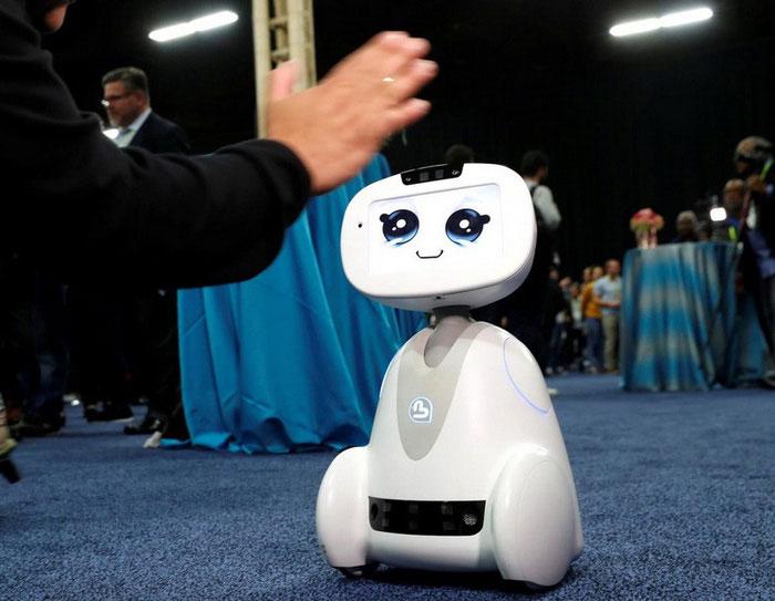 Robot đa năng Buddy