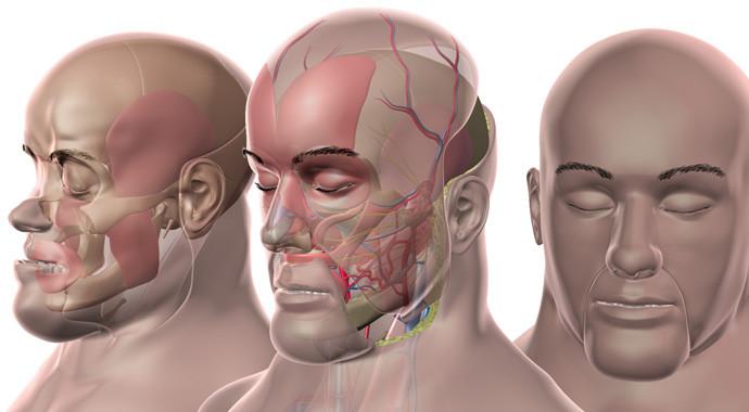 Có tất cả gần 40 ca cấy ghép mặt đã được thực hiện trên thế giới.