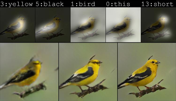 Tranh vẽ chim do trí tuệ nhân tạo của Microsoft thực hiện.