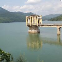 """""""Cụ"""" rùa Hoàn Kiếm xuất hiện ở hồ Yên Lập, Quảng Ninh"""