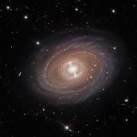 Đây là khoảnh khắc đẹp trọn vẹn nhất của thiên hà NGC 1398