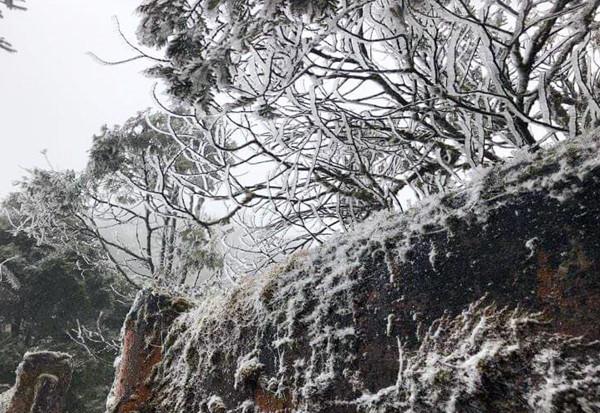 Khung cảnh tuyết phủ trắng xóa tuyệt đẹp ở đèo Ô Quy Hồ.