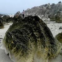 """""""Nghĩa địa"""" san hô hóa thạch 6.000 năm, rộng 20.000m2 ở Lý Sơn"""