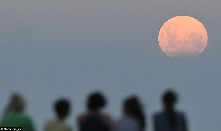 Người dân tập hợp xem hiện tượng thiên văn kỳ thú tại New Zealand.