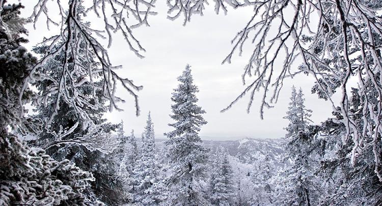 Khu vực Chelyabinsk của Nga nhiệt độ giảm xuống âm 37 độ C.