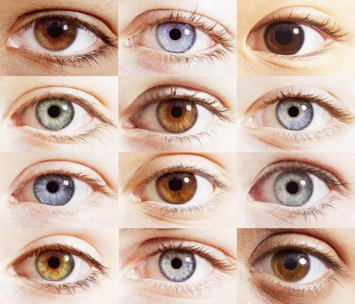 Màu nâu chính là màu nguyên thủy của mắt, cũng là màu phổ biến nhất hiện nay