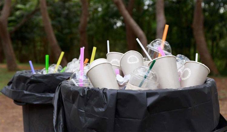 Trung bình ở Mỹ, một người dùng 1,7 ống hút nhựa mỗi ngày