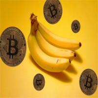 Bananacoin - Đồng tiền chuối, có trị giá bằng 1 cân chuối