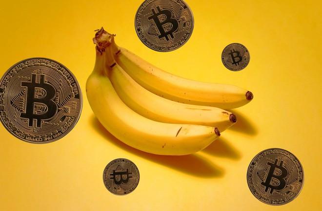 Bananacoin là một token dựa trên Ethereum, được định giá bằng giá xuất khẩu của 1 kilogram chuối.