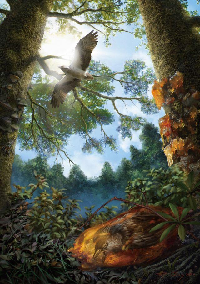 Phục dựng con chim mắc kẹt trong khối nhựa cây sau này hóa thành hổ phách.