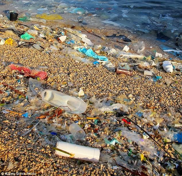 Mỗi năm, hàng triệu tấn rác nhựa được đưa ra các đại dương.