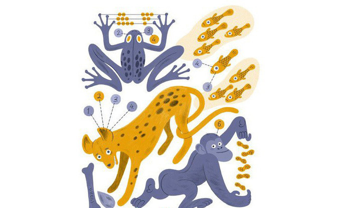 Liệu các động vật có biết đếm?