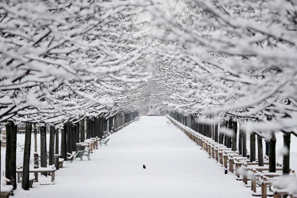 Vườn Tuileries ngập tuyết