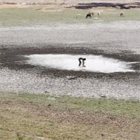 Những thành phố lớn có nguy cơ cạn kiệt nước trên thế giới
