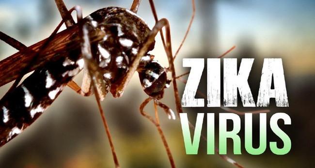 Bệnh do virus zika gây ra vẫn nằm trong top những đại dịch nguy hiểm của nhân loại.