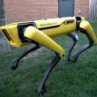 """Robot giờ cũng biết """"ga lăng"""": Giữ cửa nhường nhau đi qua"""