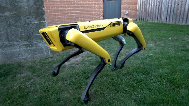 Robot SpotMini 4 chân nay đã trở lại và... ga-lăng hơn xưa nhiều.