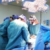 Cấy ghép nội tạng là gì?