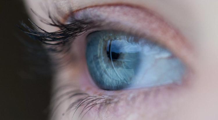 """Một cơ quan nhân tạo mới đem lại ý nghĩa mới cho cụm từ """"làm mắt""""."""