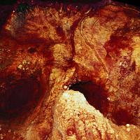 Phát hiện bất ngờ: nghệ thuật hang động cổ xưa nhất thuộc về người Neanderthal